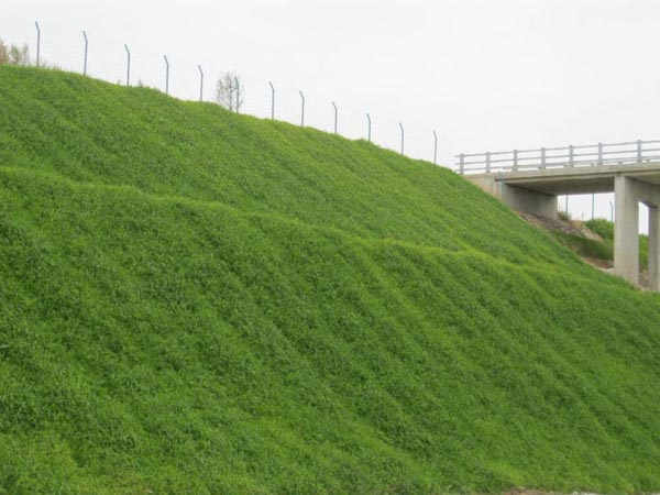 山西中阳边坡防护及绿化工程